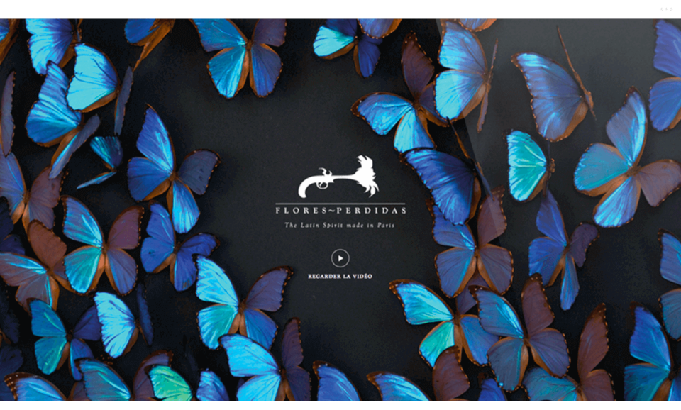 yoann-sirvin-yozz-2014-flores-perdidas